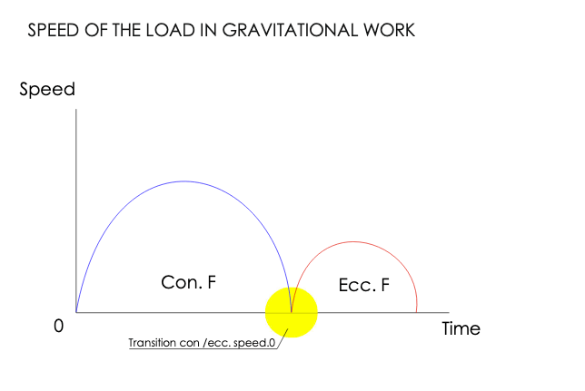 SPEED OF THE LOAD IN GRAVITATIONAL WORK